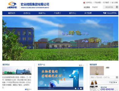 宏业控股集团有限公司seo案例